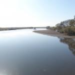 江戸川を撮影しました。